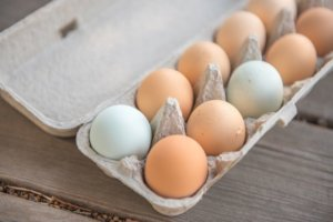 A carton of white and brown eggs for an ingredient article about eggs and new egg products