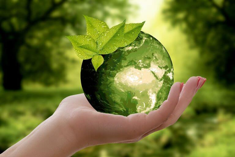 A woman's hand holding a green globe with wet green leaves for an ingredient article about sustainability and eco-friendly materials in design, fashion and beauty